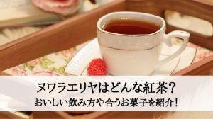 ヌワラエリヤはどんな紅茶?おいしい飲み方や合うお菓子を紹介!
