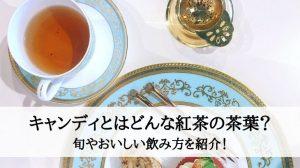 キャンディとはどんな紅茶の茶葉?旬やおいしい飲み方を紹介!