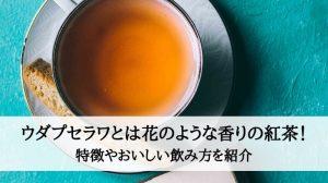 ウダプセラワとは花のような香りの紅茶!特徴やおいしい飲み方を紹介