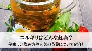 ニルギリはどんな紅茶?美味しい飲み方や人気の茶葉について紹介!