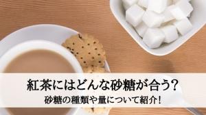 紅茶にはどんな砂糖が合う?砂糖の種類や量について紹介!